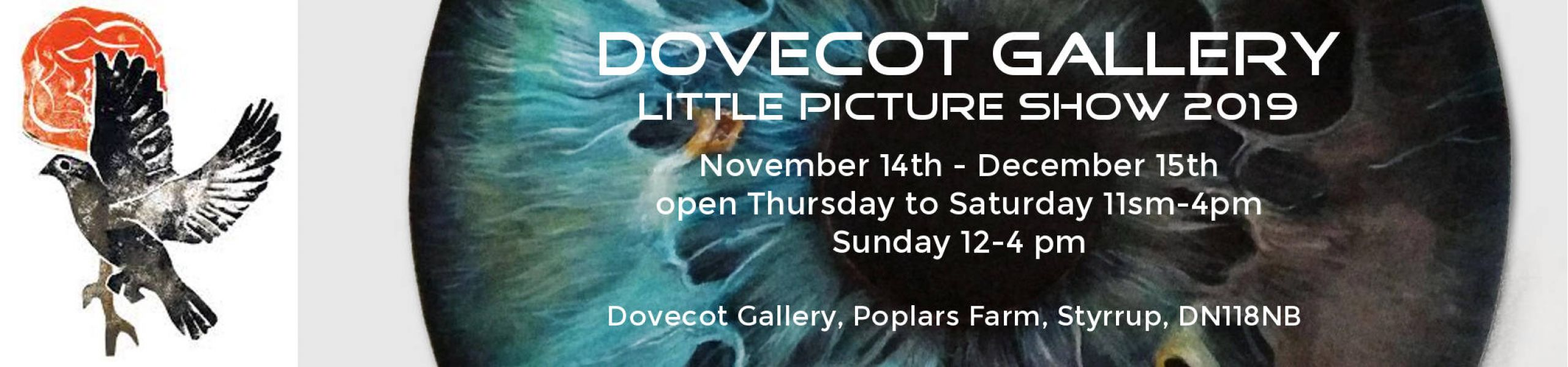 Dovecot Gallery - oncaster - Elisa Neri